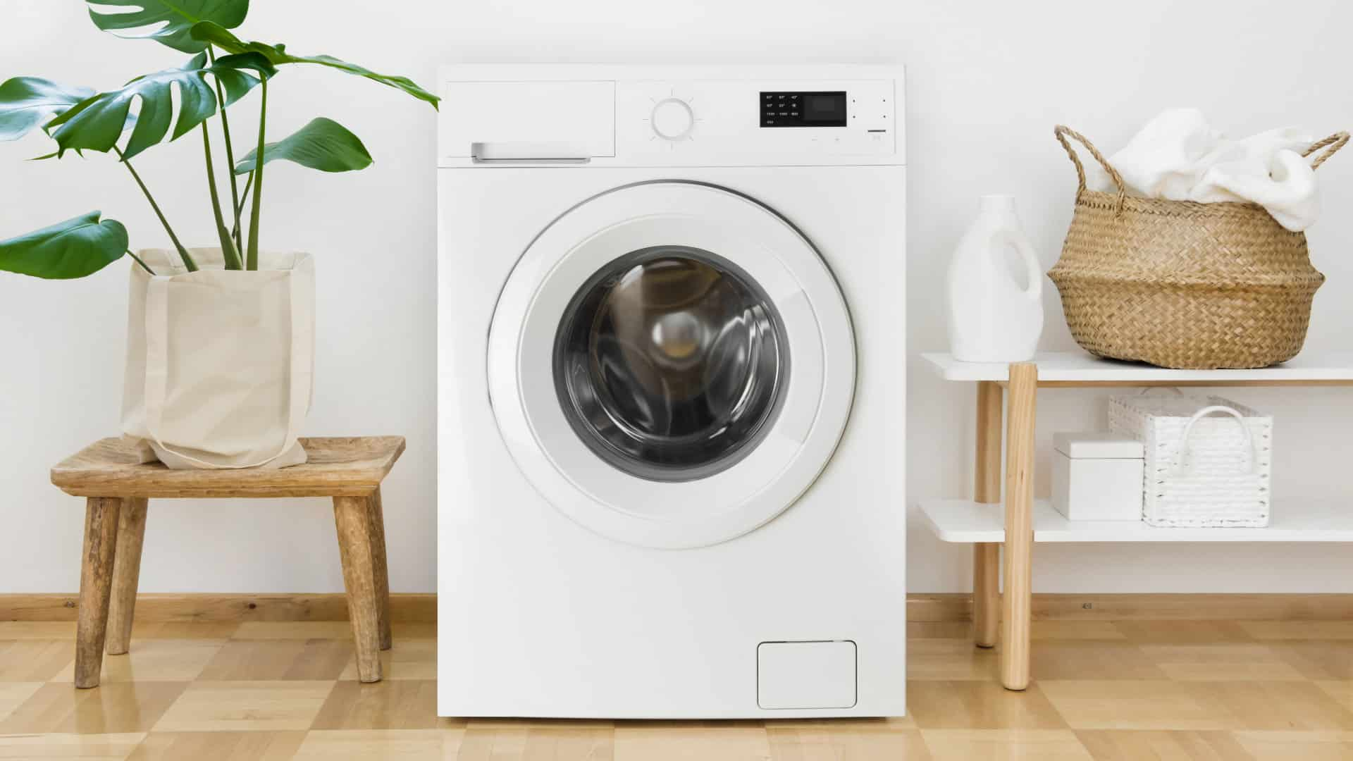 """Featured image for """"8 Reasons Your Washer Might Be Leaking"""""""